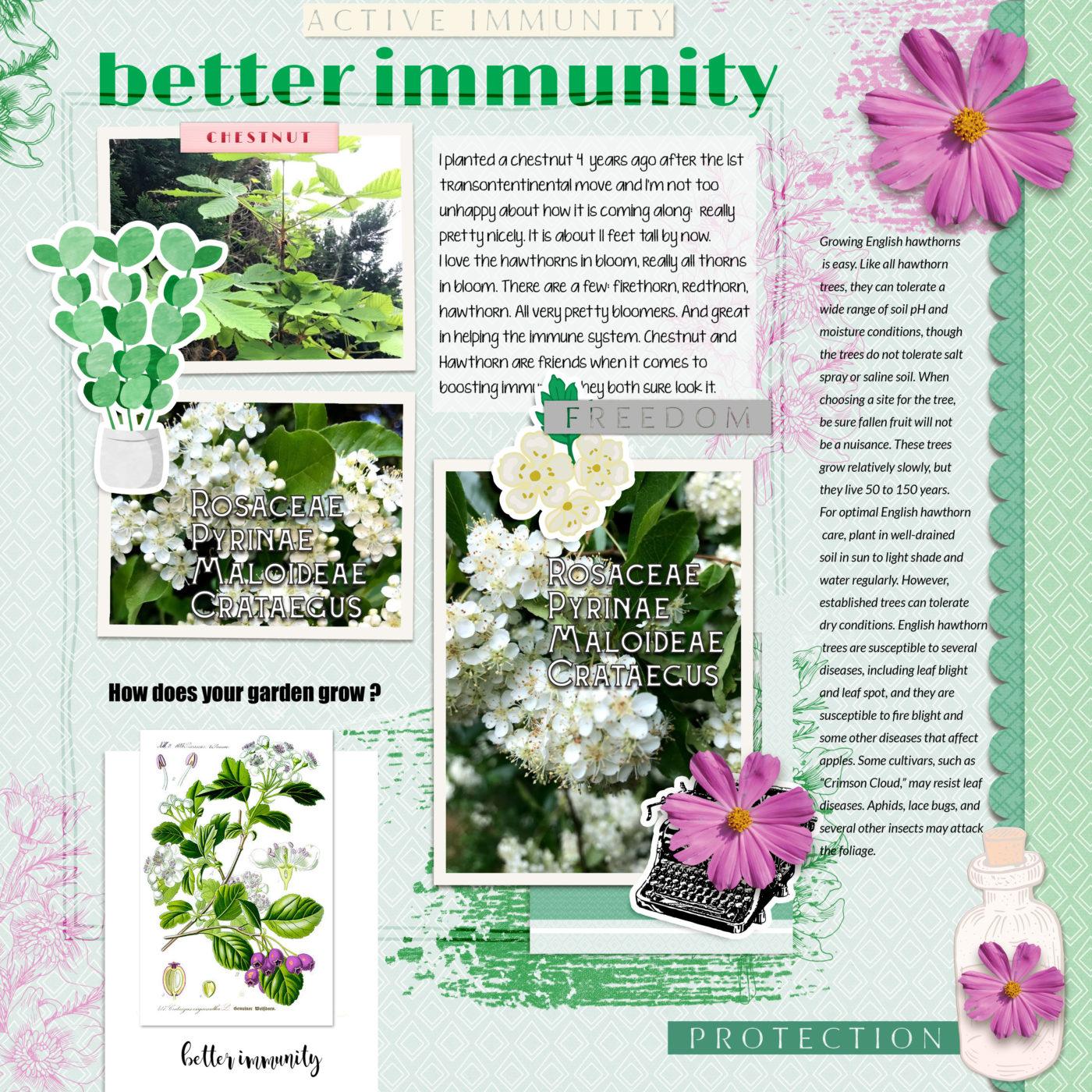greene edition better immunity